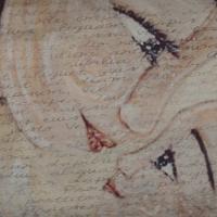 Lettera di Scuse a Me Stessa