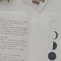 Il Diario della Luna
