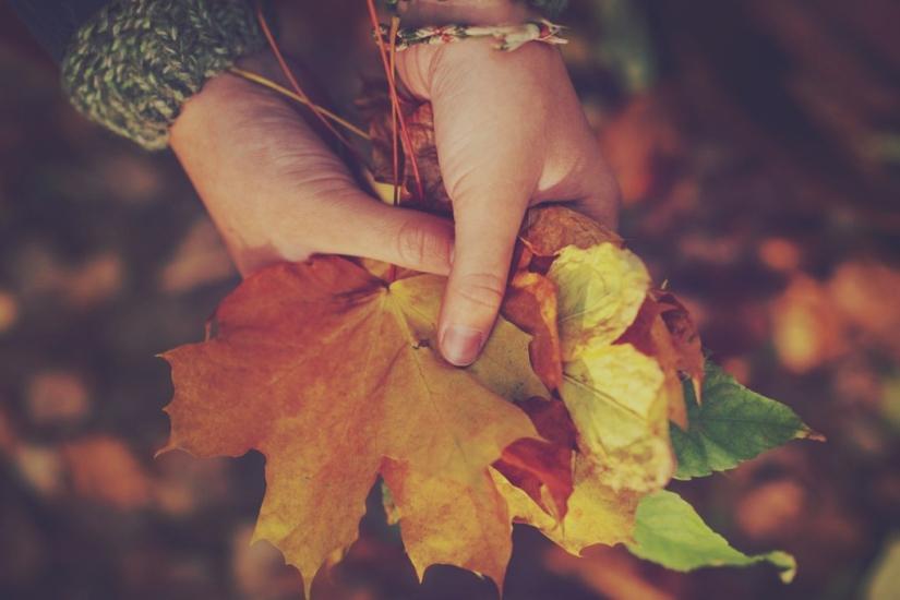 bouquet-autunno-foglie-1024x683