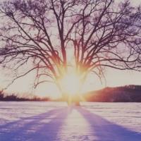 Solstizio d'Inverno e Tao - Il Ritorno e la Ri-nascita