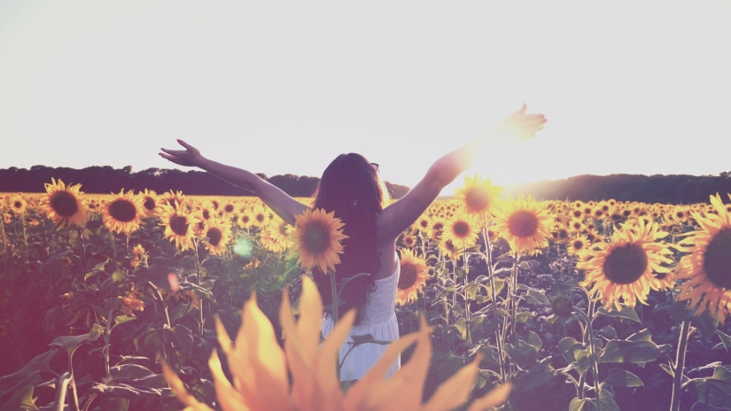 videoblocks-young-girl-standing-at-the-field-of-sunflowers-and-raising-her-hands-up-woman-enjoy-by-landscape-and-freedom-at-the-meadow-rear-back-view-slow-motion-close-up_scmco