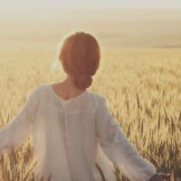Le Feste del Raccolto: la Magia del Grano e del Sole